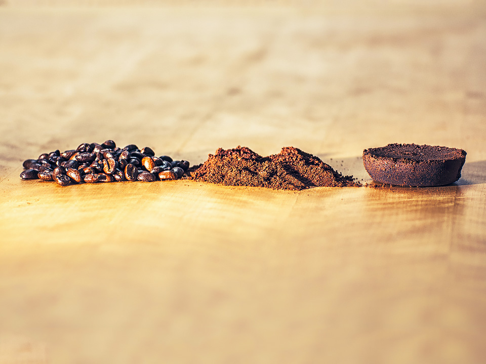 The life cycle of the humble coffee bean. But could it be that coffee could extend your life? Image credit : Thomas [CC BY 2.0] via Flickr.